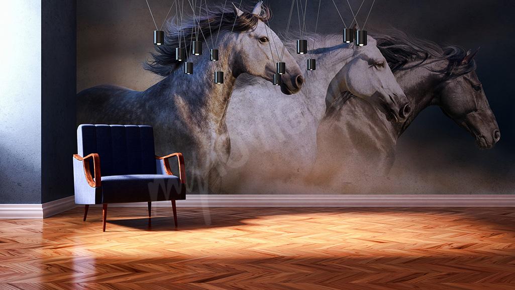 Fototapeta konie galop
