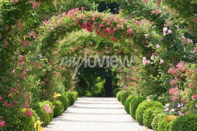 Fototapeta Rose Arch In the Garden
