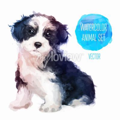 Plakat Dog hand painted watercolor illustration