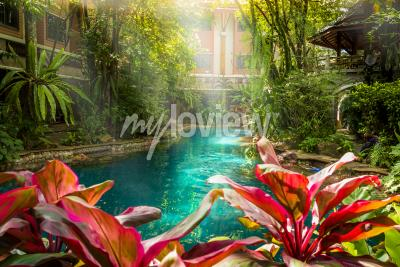Fototapeta Jungle swimming pool style under trees and house background at sunshine time