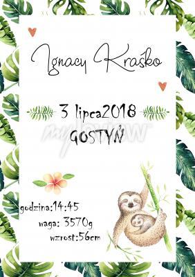 Plakat Metryczka dla dziecka dżungla