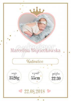 Plakat Metryczka dla dziewczynki Little Princess