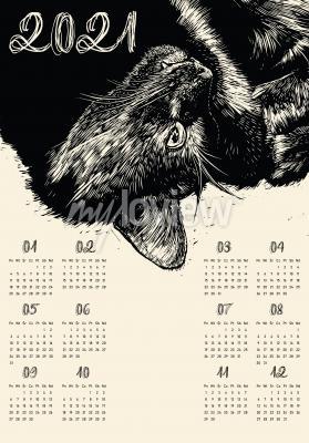 Plakat Kalendarz 2021 czarny kot