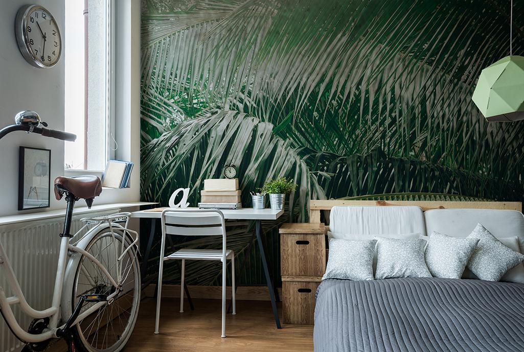 Fototapeta styl eko tropiklane liście