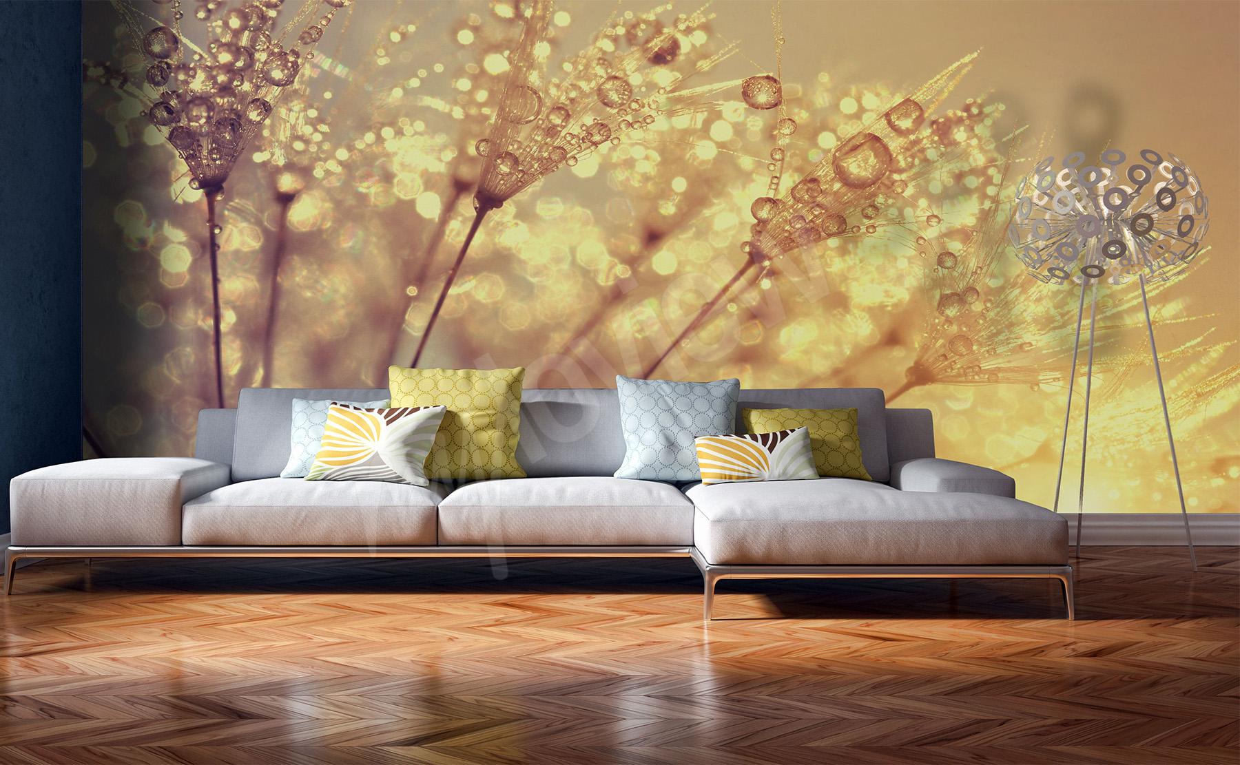 fototapety dmuchawce cienne na wymiar. Black Bedroom Furniture Sets. Home Design Ideas