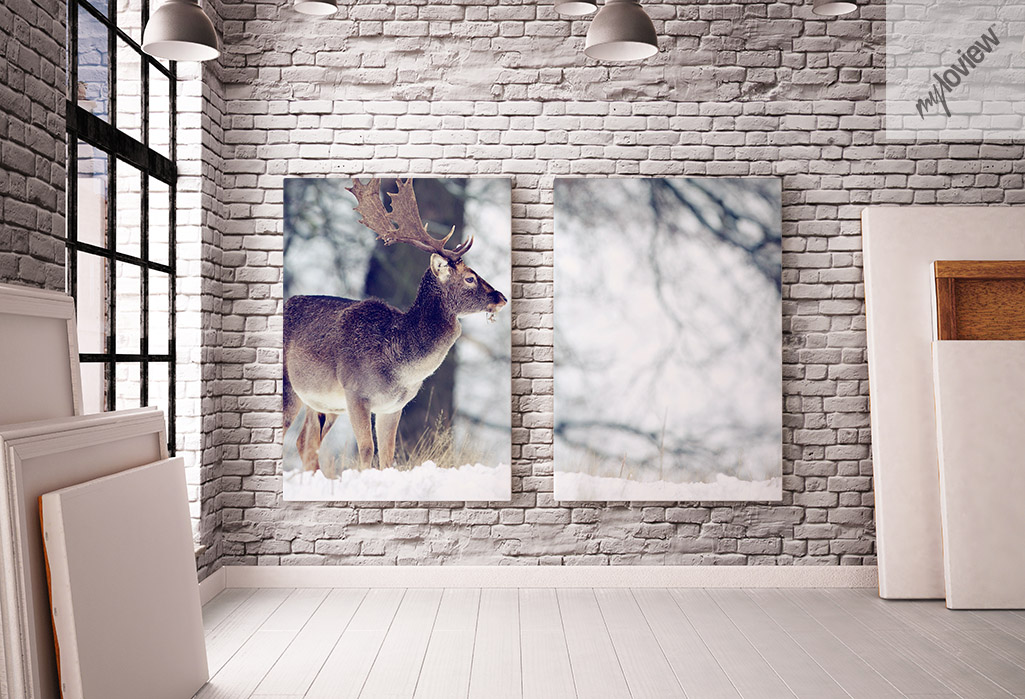 Obraz jeleń