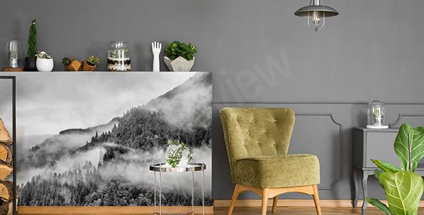 Czarno-biała naklejka las