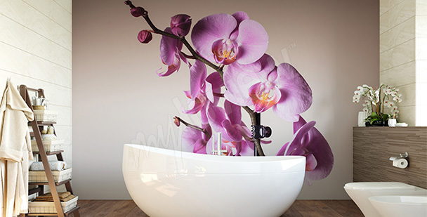 orchidee w lazience