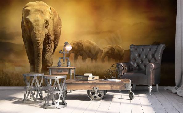 Fototapeta afrykańskie słonie