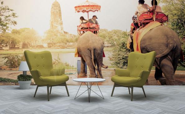Fototapeta Azja turyści na słoniach