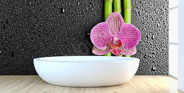 Fototapeta bambus z kwiatem