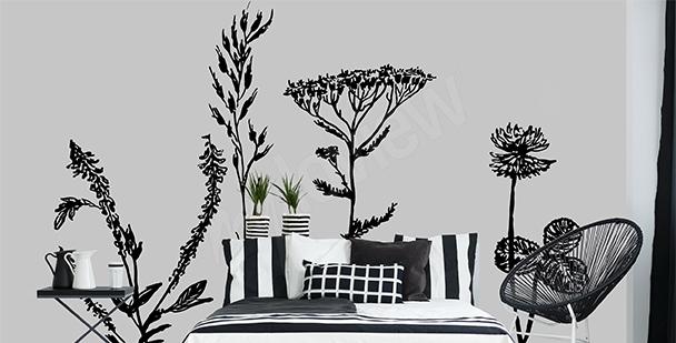 Fototapeta czarno-białe rośliny