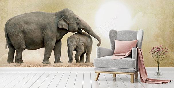 Fototapeta dwa słonie