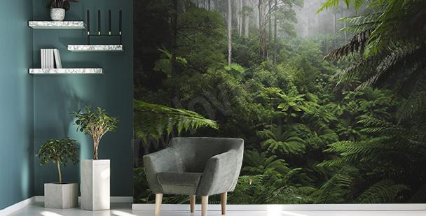 Fototapeta dżungla 3D