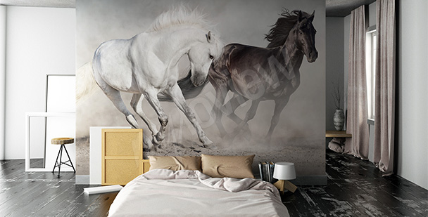 Fototapeta konie w biegu