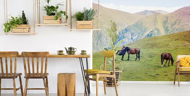 Fototapeta konie w górach