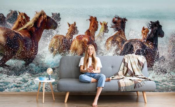 Fototapeta konie w wodzie