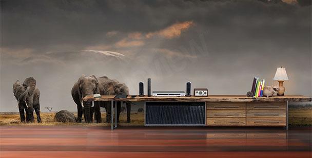 Fototapeta krajobraz afrykański