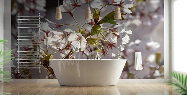 Fototapeta kwiat wiśni w łazience