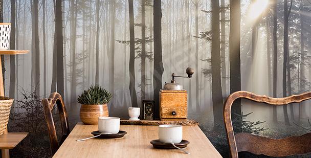 Fototapeta jesienny las we mgle