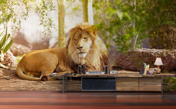 Fototapeta lew do przedpokoju