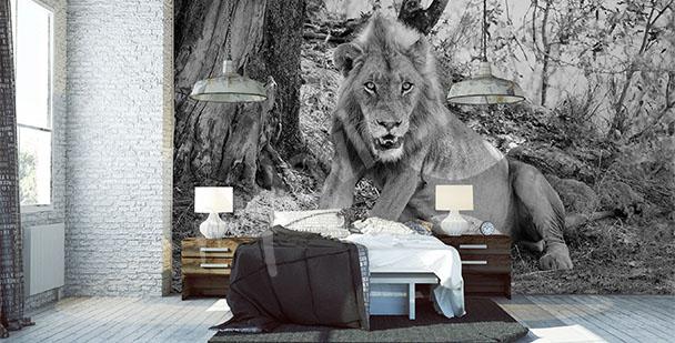 Fototapeta lew do sypialni