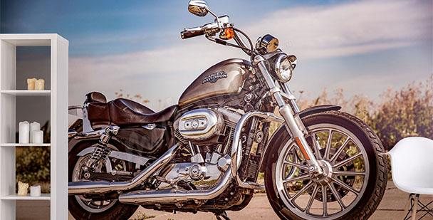 Fototapeta motocykl Harley-Davidson
