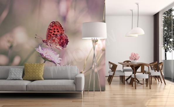 Fototapeta motyl na kwiatku