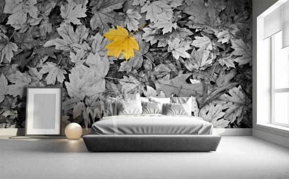 Fototapeta natura z czarno-białymi liśćmi