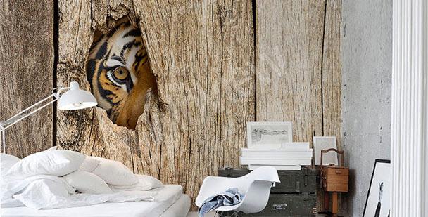 Fototapeta oko tygrysa
