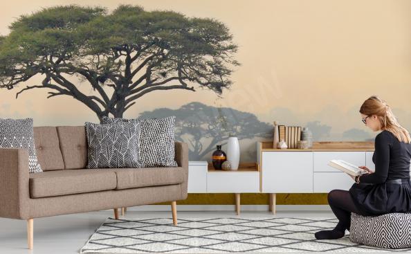 Fototapeta panorama Afryki