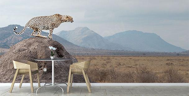 Fototapeta park narodowy w Kenii