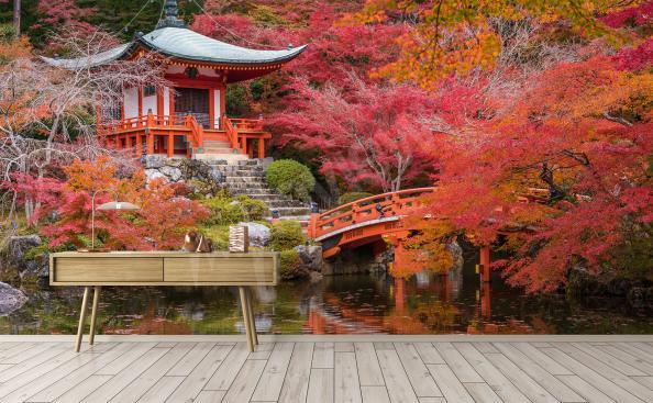 Fototapeta park w Japonii