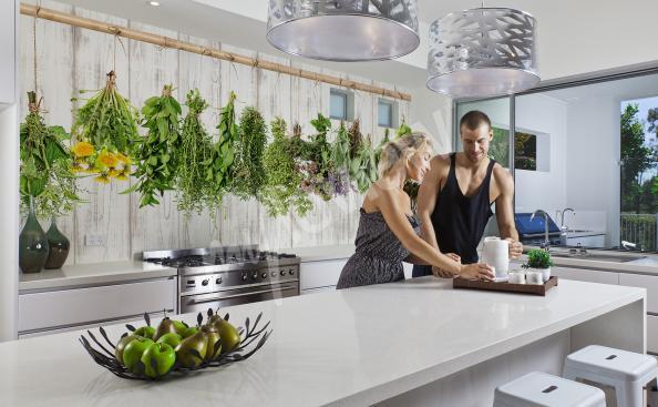 Fototapeta przyprawy i zioła do kuchni