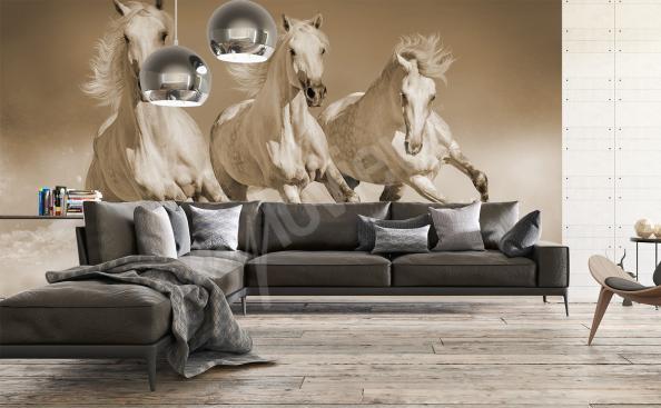 Fototapeta trójka koni w galopie