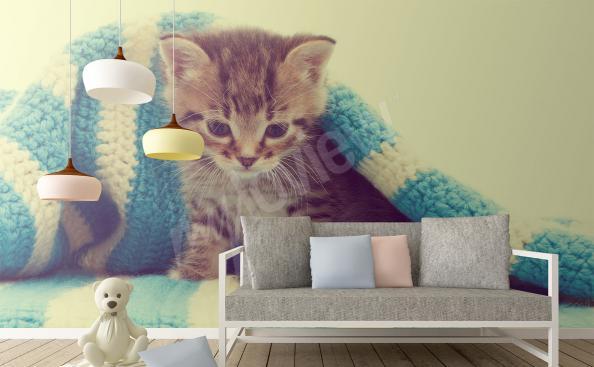 Fototapeta z kotkiem do pokoju dziecięcego