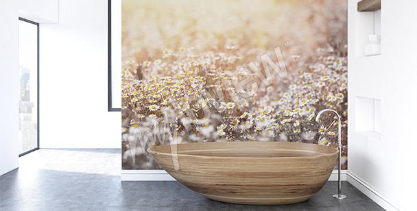 Fototapeta z kwiatami na polu