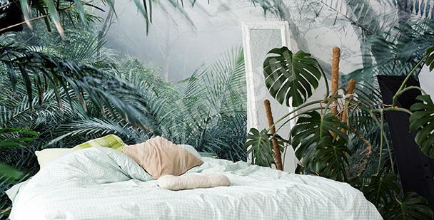 Fototapeta z tropikalnym lasem