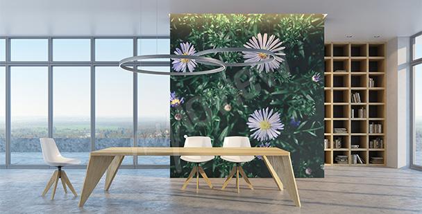Fototapeta zieleń i kwiaty