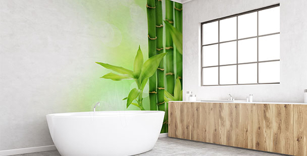 Fototapeta zielony bambus