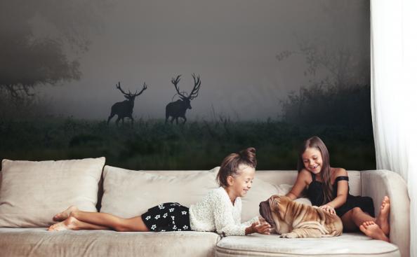 Fototapeta zwierzęta - jelenie w lesie