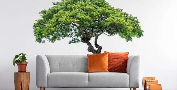 Naklejka drzewo z  liśćmi