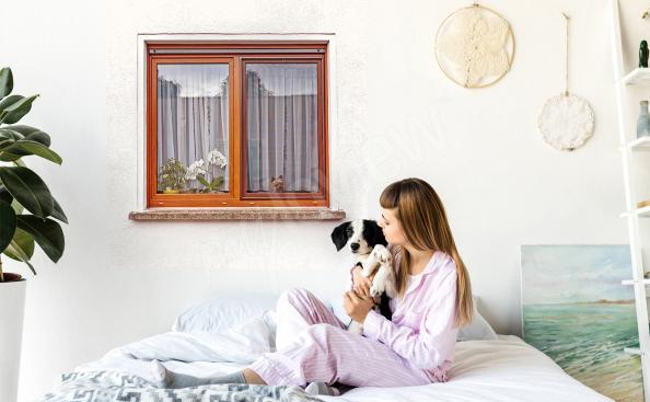 Naklejka okno z psem