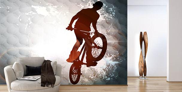 Nowoczesna fototapeta z rowerem