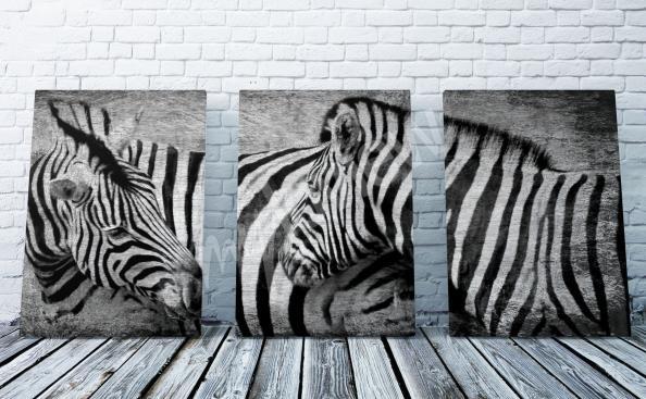 Obraz Afryka zebry