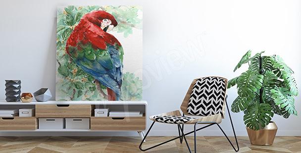 Obraz barwna papuga