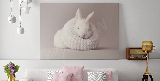 Obraz biały królik do salonu