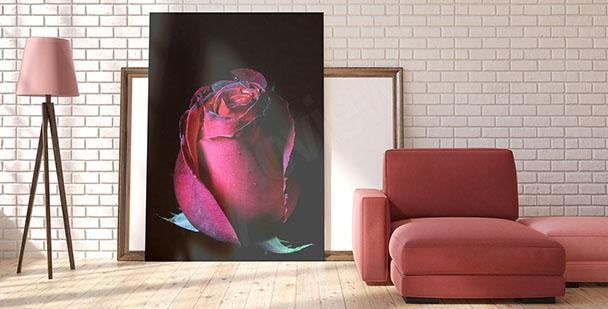 Obraz czerwona róża