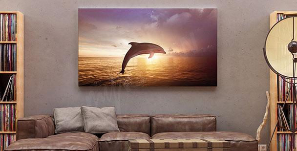 Obraz delfin i zachód słońca