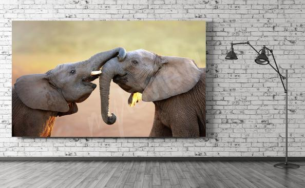 Obraz do salonu słonie